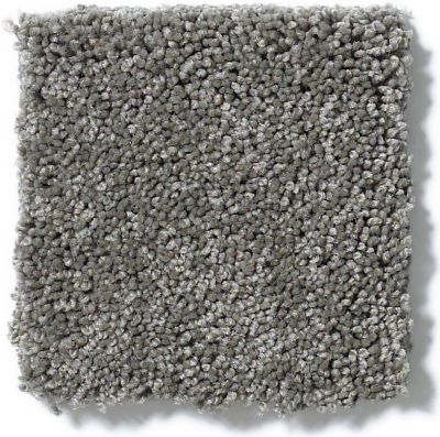 Shaw Floors My Choice II Grey Flannel 00501_E0651