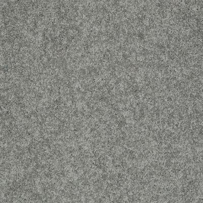 Shaw Floors My Choice II Charcoal 00551_E0651