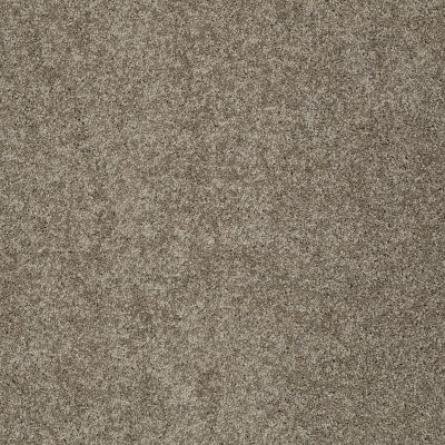 Shaw Floors My Choice II Flax 00751_E0651