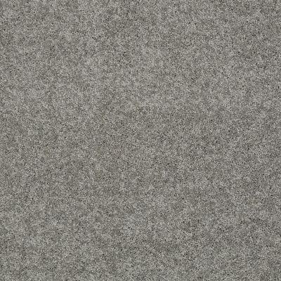 Shaw Floors My Choice II Fog 00753_E0651
