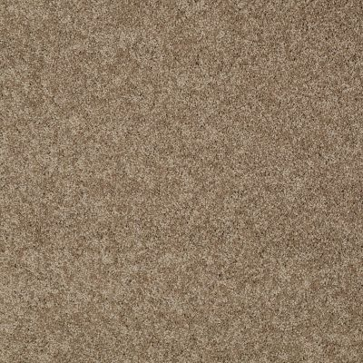 Shaw Floors My Choice II Saffron 00757_E0651