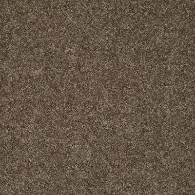 Shaw Floors My Choice II Weathered Wood 00759_E0651