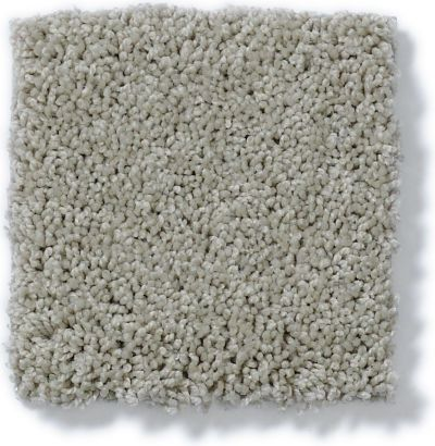 Shaw Floors My Choice III Textured Canvas 00150_E0652
