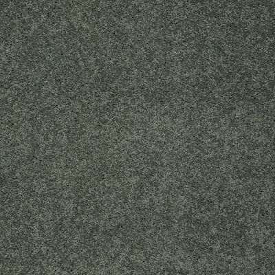 Shaw Floors My Choice III Bay Laurel 00351_E0652