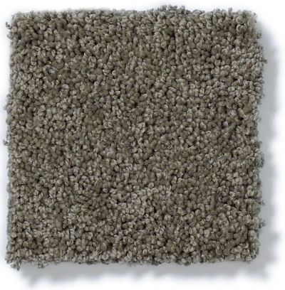 Shaw Floors My Choice III Grey Flannel 00501_E0652