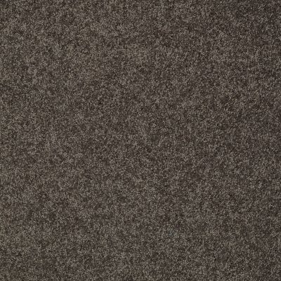 Shaw Floors My Choice III Chocolate 00758_E0652