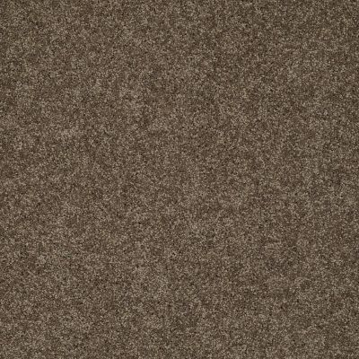 Shaw Floors My Choice III Weathered Wood 00759_E0652