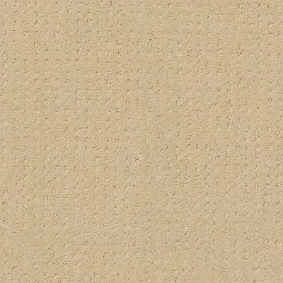 Shaw Floors My Choice Pattern French Linen 00103_E0653