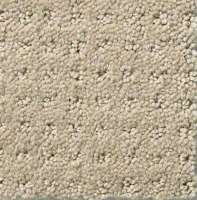 Shaw Floors My Choice Pattern Textured Canvas 00150_E0653