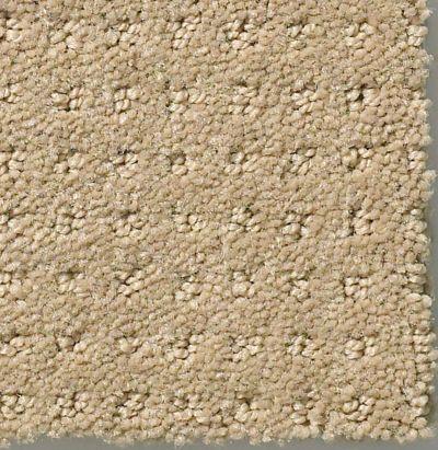 Shaw Floors My Choice Pattern Latté 00152_E0653