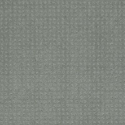 Shaw Floors My Choice Pattern Silver Sage 00350_E0653