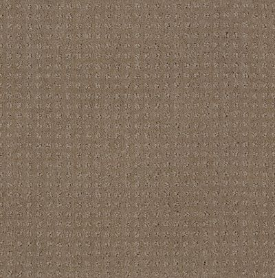Shaw Floors My Choice Pattern Flax 00751_E0653