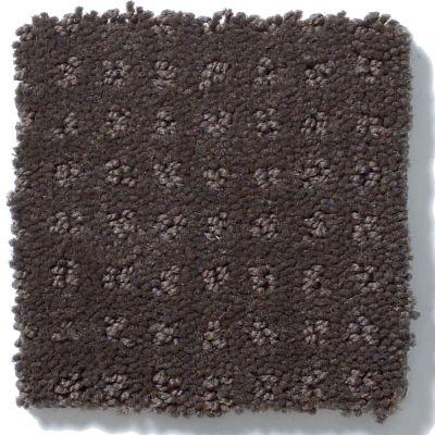 Shaw Floors My Choice Pattern Chocolate 00758_E0653