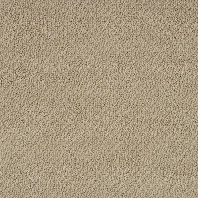 Shaw Floors Truly Relaxed Loop Taffeta 00107_E0657