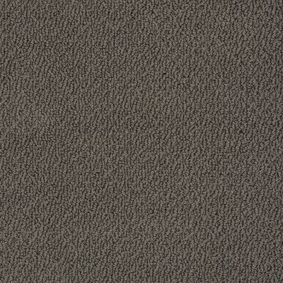 Shaw Floors Truly Relaxed Loop Vintage Leather 00755_E0657