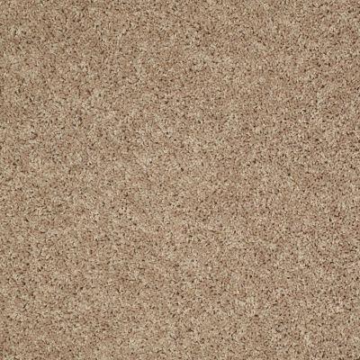 Shaw Floors Cabinanet Solid Prairie Dust 00117_E0663