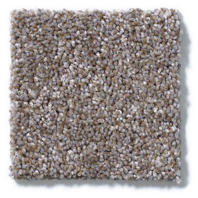 Shaw Floors Choose Me Nickel Dust 00510_E0684