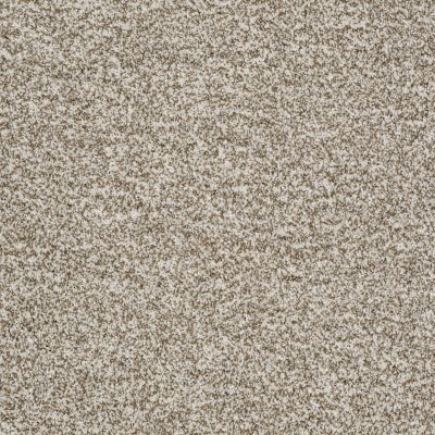 Shaw Floors Treat Me (t) Shitake 00150_E0692