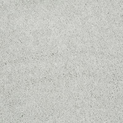 Shaw Floors Remember Me (s) Morning Fog 00540_E0694