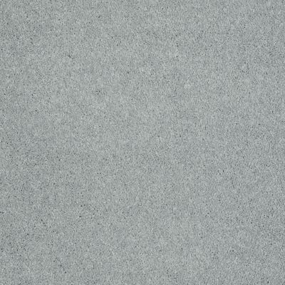 Shaw Floors Keep Me I Stainless Steel 00501_E0696