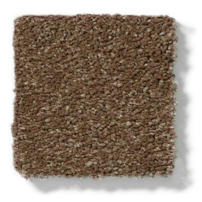 Shaw Floors Keep Me I Chestnut 00707_E0696