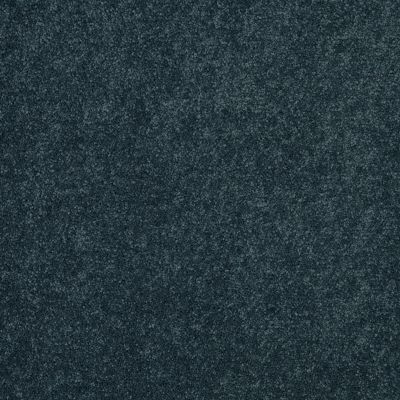 Shaw Floors Keep Me II New Navy 00403_E0697