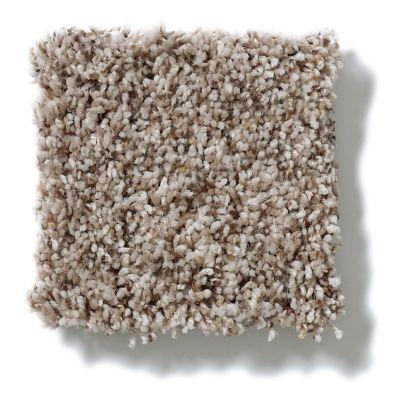 Shaw Floors Humor Me Pebble Dust 00700_E0699
