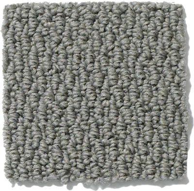 Shaw Floors Trust Me Grey Stone 00500_E0700