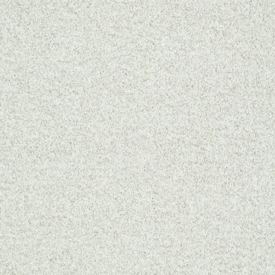 Shaw Floors Dazzle Me Texture Twinkle 00100_E0702