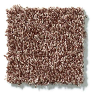 Shaw Floors Dazzle Me Texture Saddle 00703_E0702