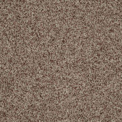Shaw Floors Dazzle Me Twist Treeline 00711_E0703