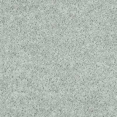 Shaw Floors Tactical Stone 00500_E0704