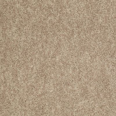 Shaw Floors Value Collections Expect More (s) Net Antique Linen 00106_E0710