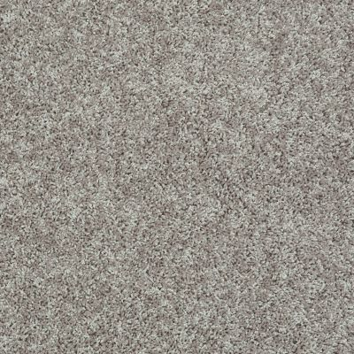 Shaw Floors Value Collections Ride It Out (s) Net Taupe Stone 00501_E0711