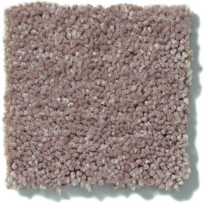 Shaw Floors Value Collections Full Court Net Hearth Stone 00700_E0713