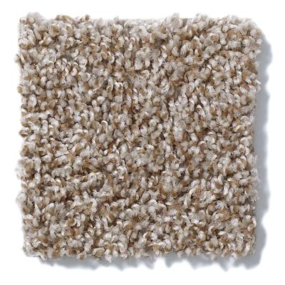 Shaw Floors Value Collections Expect More (t) Net Warm Sand 00131_E0738