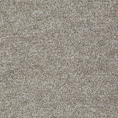 Shaw Floors Value Collections Expect More (t) Net Concrete 00530_E0738