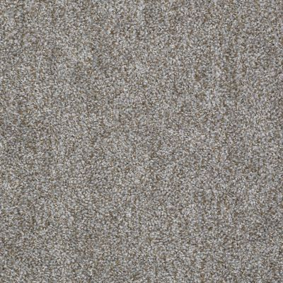 Shaw Floors Value Collections Expect More (t) Net Gray Stone 00531_E0738