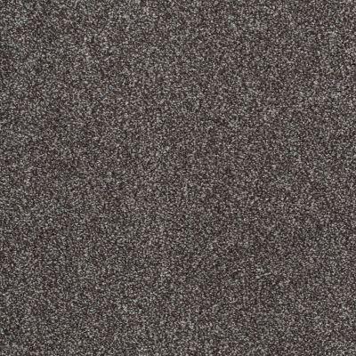Shaw Floors SFA Awesome 5 (t) Rich Earth 00715_E0744