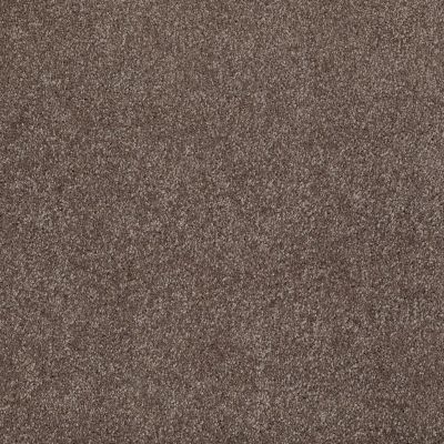 Shaw Floors SFA Awesome 6 (s) Rustic Taupe 00706_E0745
