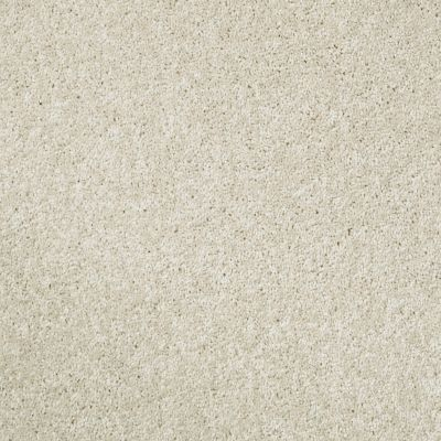 Shaw Floors Value Collections Xv540 Net Snow Cone 00100_E0756