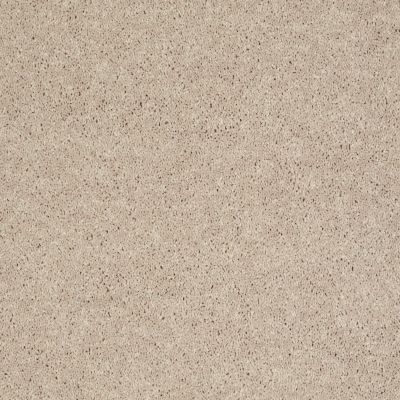 Shaw Floors Value Collections Xv540 Net Feather 00120_E0756