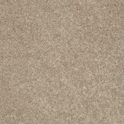 Shaw Floors Value Collections Xv540 Net Weathered Wood 00300_E0756