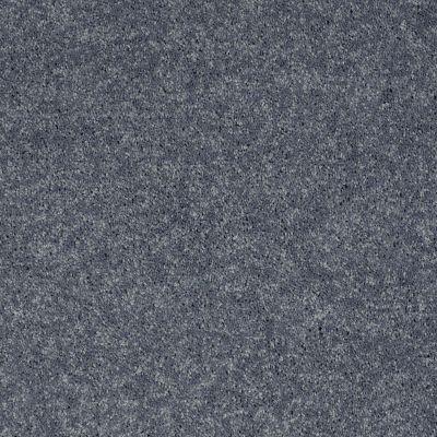 Shaw Floors Value Collections Xv540 Net Blue Bird 00421_E0756
