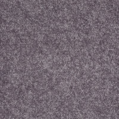Shaw Floors Value Collections Xv540 Net Pewter 00521_E0756