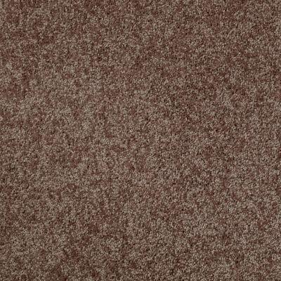 Shaw Floors Value Collections Xv540 Net Mocha Chip 00704_E0756