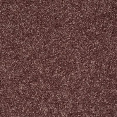 Shaw Floors Value Collections Xv540 Net Plum Berry 00920_E0756