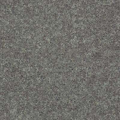 Shaw Floors All Star Weekend III Net Ink Spot 00501_E0773