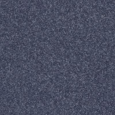Shaw Floors All Star Weekend III Net Charcoal 00545_E0773