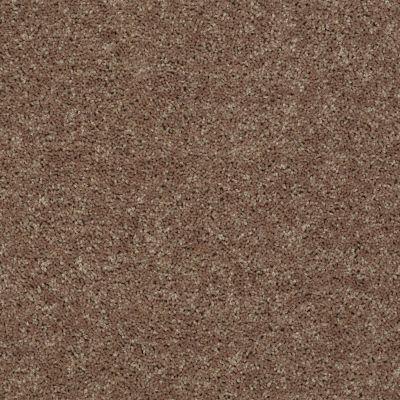 Shaw Floors All Star Weekend III Net Granola 00701_E0773